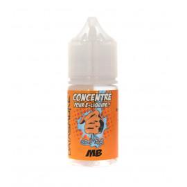 Concentré MB Datasmoke 30 ml