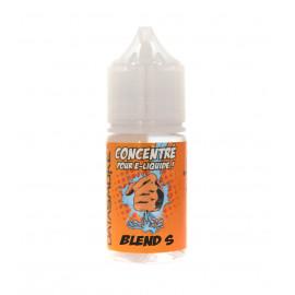 Concentré BLEND-S Datasmoke 30 ml